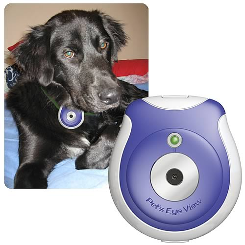 pet technology gadgets and apps for animal lovers