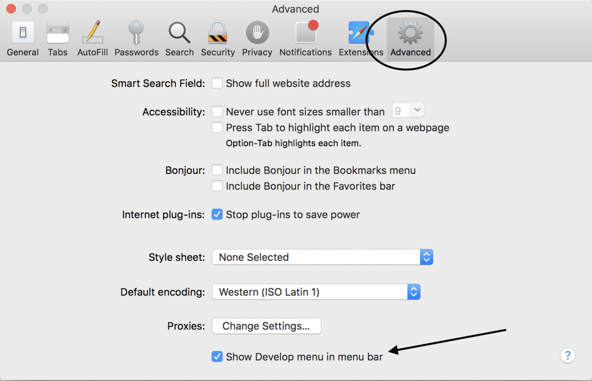 "Safari Settings On Iphone If You See €�show Develop Mode In Tool Box"" Has"