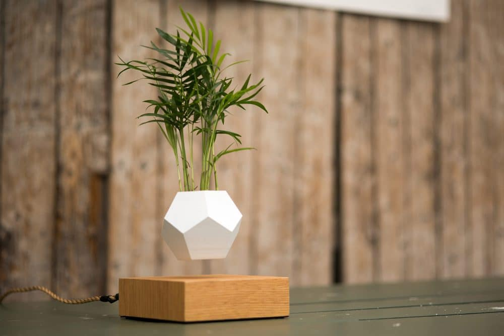 Floating Plant Pots The Science Behind Making Things Levitate