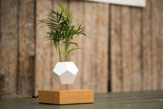 Floating Plant Pots? The Science Behind Making Things Levitate