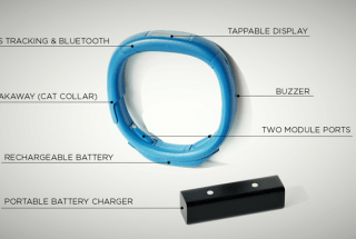 The Scollar Smart Collar Could Make Pets Safer