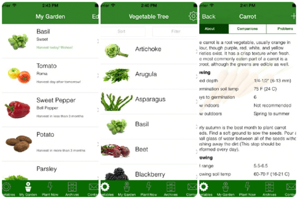 Vegetable Tree app