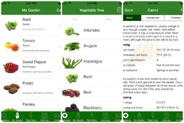 Vegetable Tree app