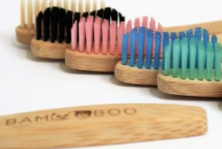 Bam and Boo Toothbrush Subscription Review