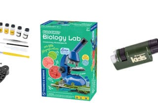 6 Best Microscopes for Kids in 2021